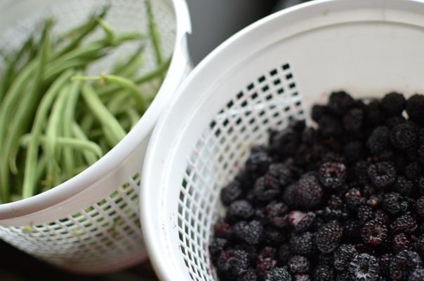 blkraspberries
